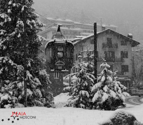Bianco e neve