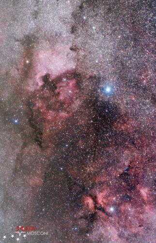 Nebulosa Nord America, Pellicano e Gamma Cygni